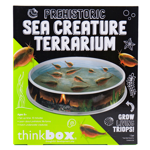 Sea Creature Terrarium